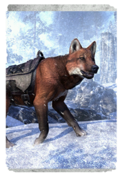 ON-card-Red Pit Wolf.png