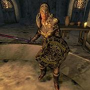 Umbra S Ebony Armor