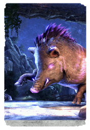 ON-card-Purple Daggerback.png