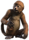 ON-concept-Monkey.png