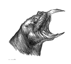 Drawing of Horker Tusks