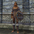 OB-item-female-Fur Armor.jpg