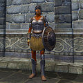 OB-item-female-Iron Armor.jpg