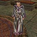 TR-artifact-Robe of the Lich.jpg