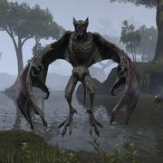 Lore:Bestiary W - The Unofficial Elder Scrolls Pages (UESP)