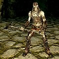 SR-creature-Draugr Wight Lord male.jpg