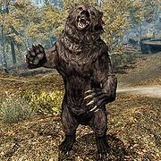 180px-SR-creature-Bear.jpg