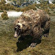 180px-SR-creature-Cave_Bear.jpg