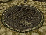 [Image: 180px-SR-trap-Trap_Door.jpg]