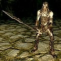 SR-creature-Draugr Wight male.jpg