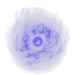 SR-icon-spell-Summon.png