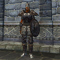 OB-item-female-Orcish Armor.jpg