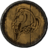 SR-icon-armor-WhiterunGuard'sShield.png