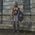 OB-item-female-Chainmail Armor.jpg