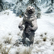 180px-SR-creature-Snow_Bear.jpg