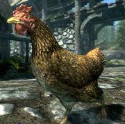 180px-SR-creature-Chicken.jpg