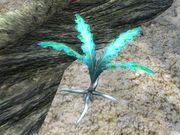 http://images.uesp.net/thumb/a/ac/OB_Flora_Nirnroot_Plant.jpg/180px-OB_Flora_Nirnroot_Plant.jpg