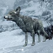 180px-SR-creature-Snow_Fox.jpg