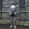 OB-item-female-Steel Armor.jpg