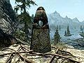Talk:The Thief Stone (Skyrim) | Elder Scrolls | FANDOM ...