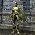 OB-item-female-Elven Armor.jpg