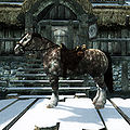 SR-creature-Horse (Windstad Manor).jpg