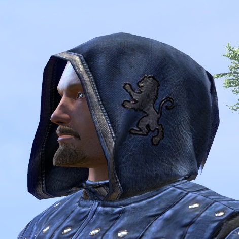 File:ON-hat-Alliance Rider Hood (Covenant).jpg