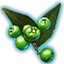 ON-icon-misc-Dawnwood Berries of Bloom.png