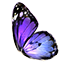 File:ON-icon-reagent-Butterfly Wing.png