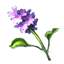 ON-icon-reagent-Water Hyacinth.png