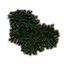 ON-icon-misc-Moss.png