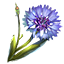 ON-icon-reagent-Corn Flower.png