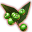 ON-icon-misc-Dawnwood Berries of Growth.png