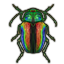 ON-icon-style material-Polished Scarab Elytra.png