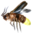 ON-icon-lure-Insect Parts.png