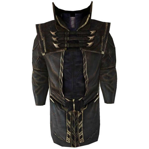 File:SR-icon-clothing-Thalmor Robes.png