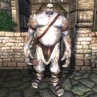 oblivion monsters the unofficial elder scrolls pages uesp