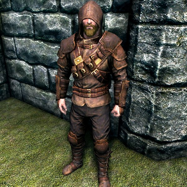 File:SR-item-Thieves Guild Armor Male.jpg