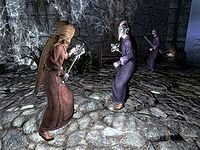 Skyrim:Waking Nightmare - The Unofficial Elder Scrolls Pages