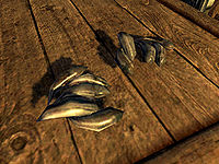 Skyrimbear Claws The Unofficial Elder Scrolls Pages Uesp