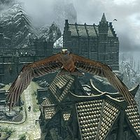 Skyrimhawk Beak The Unofficial Elder Scrolls Pages Uesp