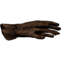SR-icon-clothing-Gloves.png