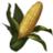 ON-icon-food-Corn.png
