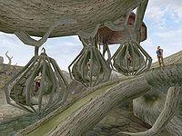 Morrowind Slaves The Unofficial Elder Scrolls Pages Uesp