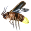 File:ON-icon-lure-Insect Parts.png