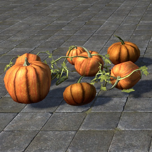 File:ON-item-furnishing-Pumpkin Patch, Display.jpg