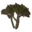 File:ON-icon-Murkmire.png