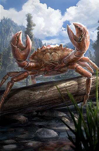 A Mubcrab