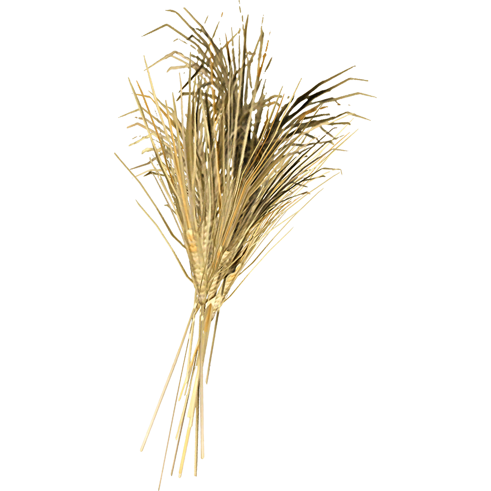 File:SR-icon-ingredient-Wheat.png