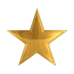 Shiny Gold Star.jpg